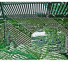 Natural Illusion 1 Photographic Print