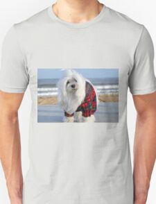 Snowdrop the Maltese - The Beach in Winter T-Shirt