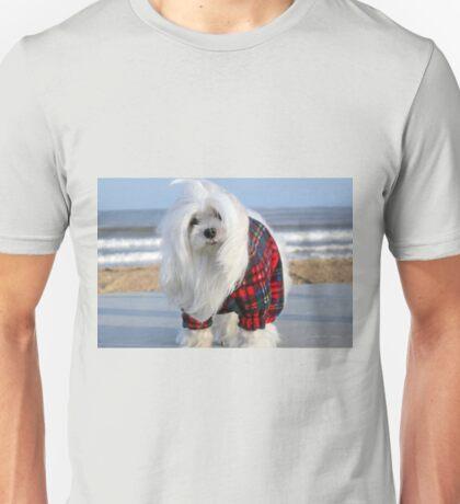 Snowdrop the Maltese - The Beach in Winter Unisex T-Shirt