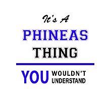 It's a PHINEAS thing, you wouldn't understand !! Photographic Print
