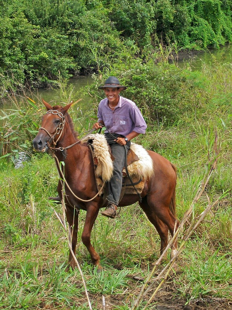 Cowboy1 by macmichael