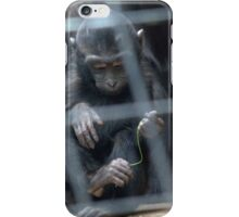 babyface in the London Zoo iPhone Case/Skin