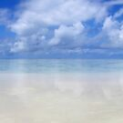 Reflections on a Beach Paradise Panorama by Robbie McDowall