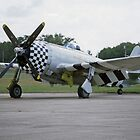 Republic P-47 Thunderbolt by Steve Walter