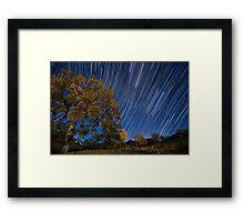 Startrails over Live Oak Framed Print