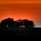February Sunset by GlennB