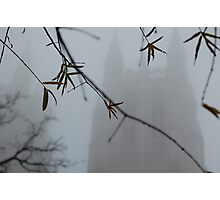 National cathedral -sunday morning Photographic Print