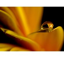 Yellow Water Droplet  Photographic Print