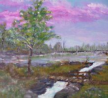 A Beaver Pond by Cynthia Kondrick