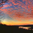 Pink Sky over Bull Shoals by CKEphotos