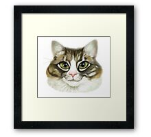Cheeky Cat 2 Framed Print