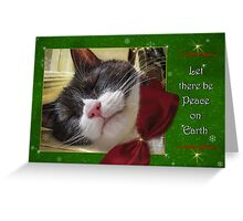 UnTroubled Peace on Earth Greeting Card