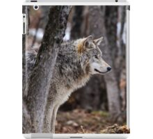 Timber Wolf in trees iPad Case/Skin