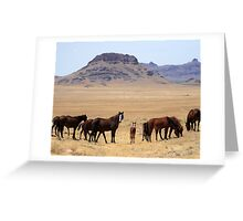 Valley of the Mustangs Greeting Card