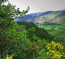 Borrowdale by WatscapePhoto