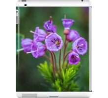 Purple Wildflowers at Mount Rainier iPad Case/Skin