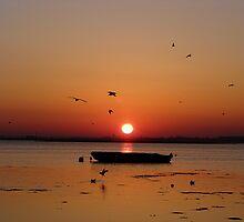 Sunrise 3 17-02-08 by Sharon Perrett