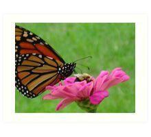 Monarch Meets Bee Art Print