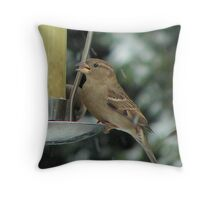 The Forcast said Snow, stocking up! Throw Pillow