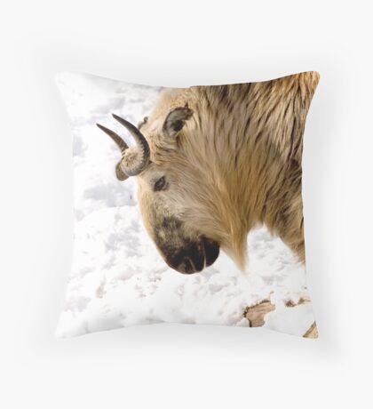 """""""Takin"""" It Slow Throw Pillow"""
