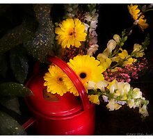 Watering Can Still life  Photographic Print