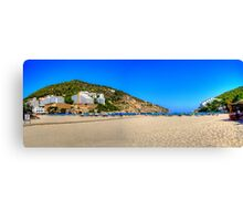 Lots of Room at the Back Canvas Print