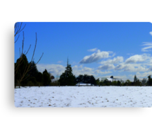 Spring snow Rural NZ - Near Gore - Southland  Canvas Print