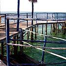 Ocean Vue From The Pier by Daniela Weil