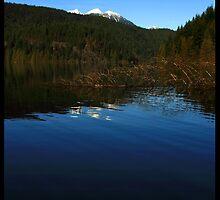 Buntzen Lake I by Brad Watson
