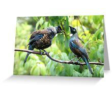 Tui - When I've been out with the boys I expect my meal to be ready when I get home......! Greeting Card