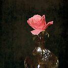 Untitled by Jan Clarke