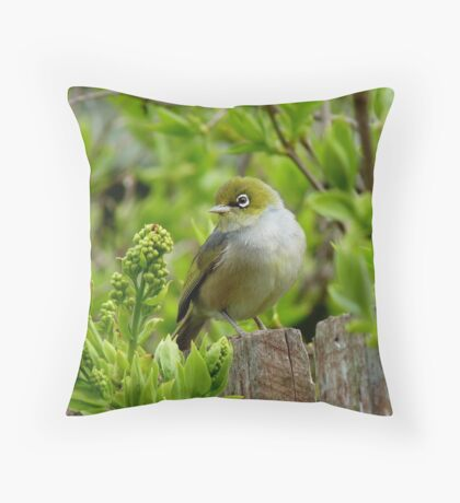 Where is the apple! - Silvereye - NZ - Southland Throw Pillow