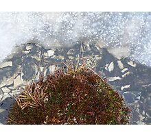 ice pool Photographic Print