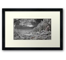 Kingdom Of Snow Framed Print