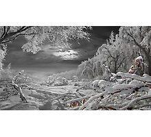 Kingdom Of Snow Photographic Print