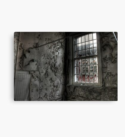Decay in all its forms Canvas Print