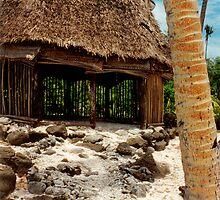 Beach Fale' - SAVAII - Samoa by Michael Lothian