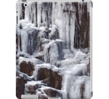 winter falls iPad Case/Skin
