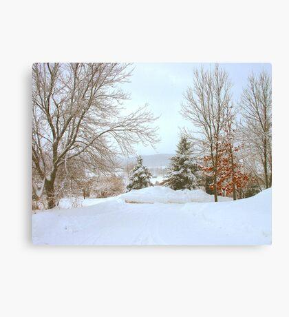 Winter Snow Scene Canvas Print