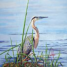 Blue Heron by Jim Phillips