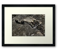 Phone Out Of Action Framed Print