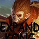 expand kong  by reffjey