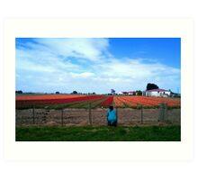 Field of Dreams! - Tulip Plantation - NZ - Southland Art Print