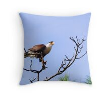 An Outlaw thats Welcomed Throw Pillow
