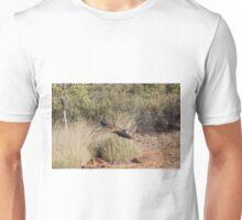 Wedge Tailed Eagle - Alice Springs Desert Park - Alice Springs Unisex T-Shirt