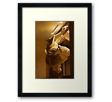 The Matrix (statue style) Framed Print