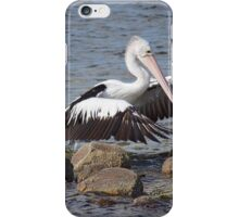 Rock Hopper iPhone Case/Skin