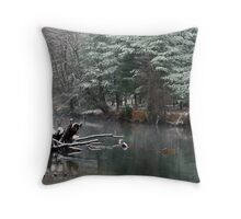 Swift River Throw Pillow