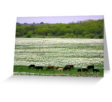 Please don't eat the wildflowers! Greeting Card