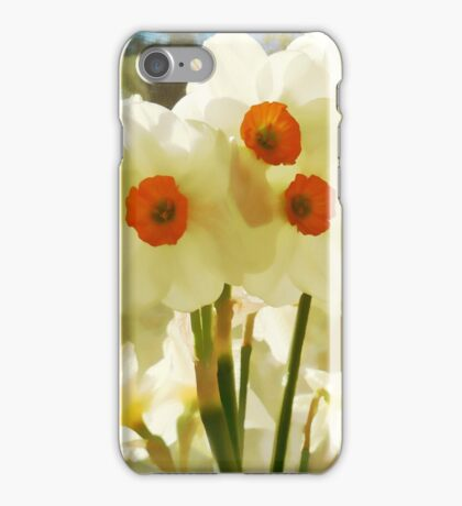 Spring's First Daffodils iPhone Case/Skin
